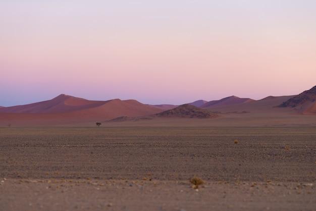 Bunter sonnenuntergang über der namibischen wüste, namibia, afrika. szenische sanddünen in der hintergrundbeleuchtung im nationalpark namib naukluft