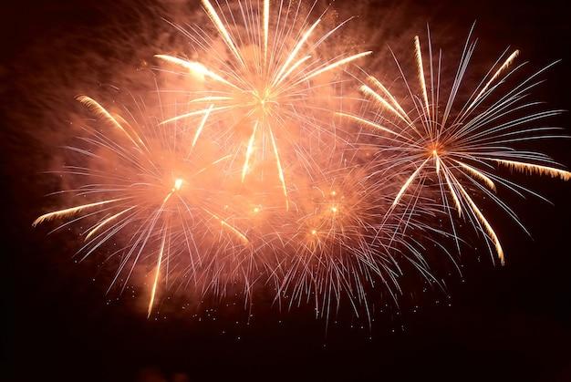 Buntes feiertagsfeuerwerk auf dem schwarzen himmel