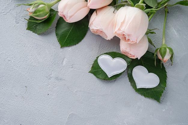 Buschige rosa rosen der schönen pfingstrose und zwei weiße herzen. valentinstag, das konzept der liebe und loyalität. kopieren sie platz.