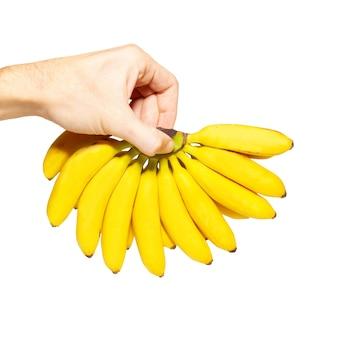 Butch von kleinen bananen in einer hand lokalisiert auf weiß