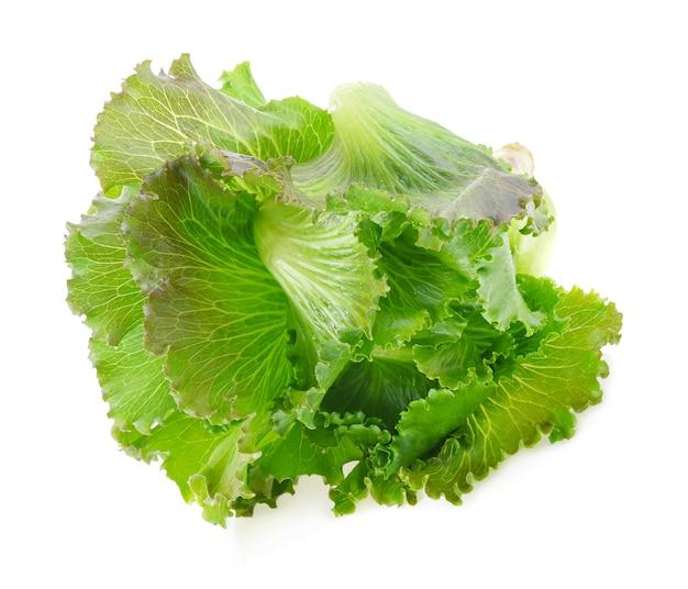 Butterkopfsalat lokalisiert auf weißem hintergrund