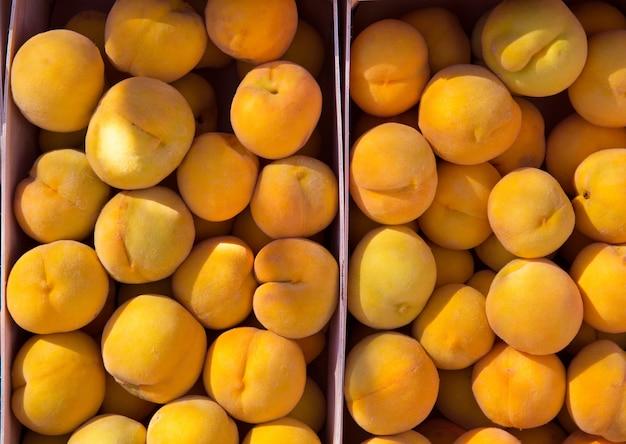 Calanda-pfirsiche fielen aus teruel spanien