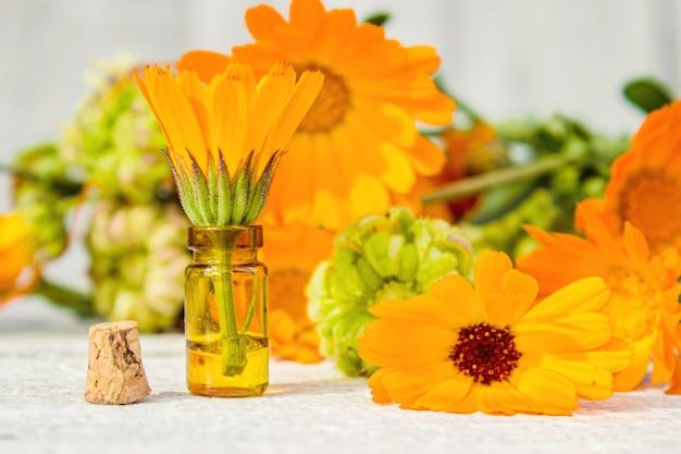 Calendula-extrakt und blumen in einer kleinen flasche. selektiver fokus