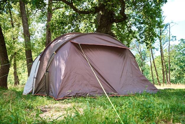 Campimg zelt im kiefernwald an einem sommertag