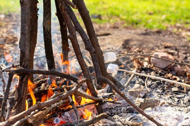 Camping lagerfeuer, marshmallows auf dem scheiterhaufen braten