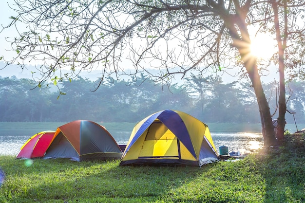 Camping mit zelt im grünen gras