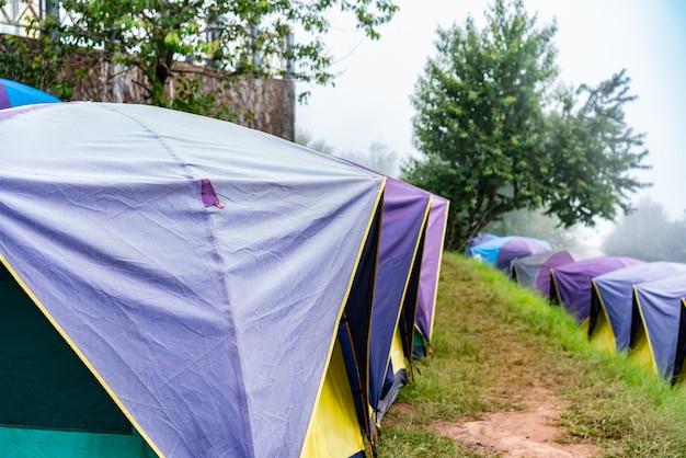 Camping und zelt auf grünem gras im wald am berg
