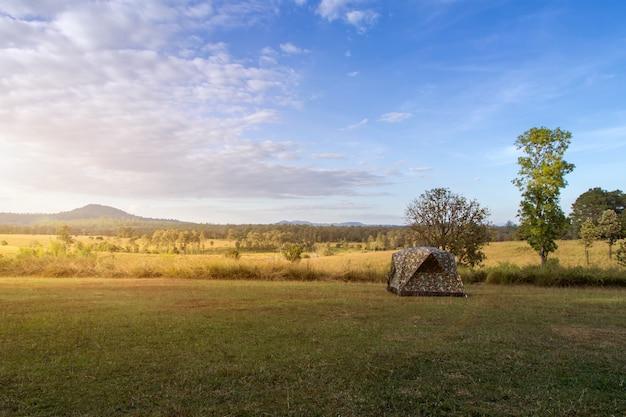 Campingzelt auf der grünen wiese nahe wald während des dramatischen sonnenaufgangs am nebligen sommermorgen, konzept des campingabenteuers im freien