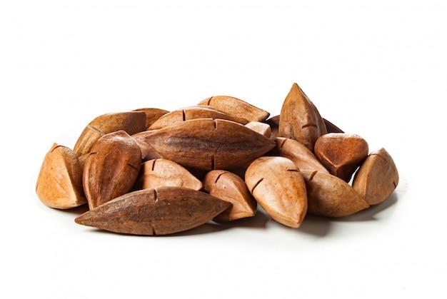 Canarium ovatum als pili-nüsse aus den philippinen bekannt