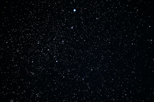 Canis hauptkonstellation. star cluster messier 41