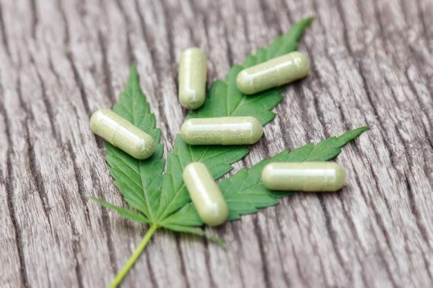 Cannabis-baumkraut für gesundes heilmittel in der heimat