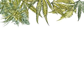 Cannabisblätter