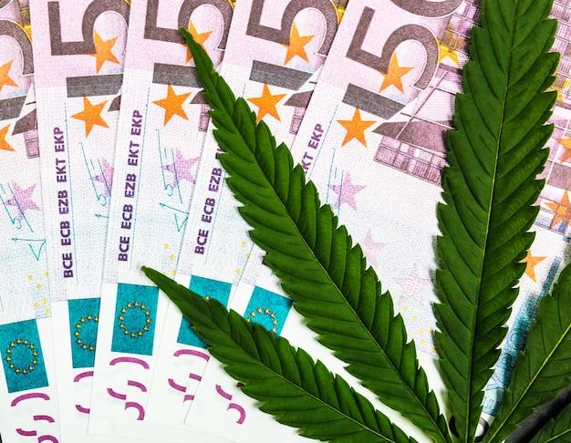 Cannabisblatt auf dem hintergrund von banknoten.