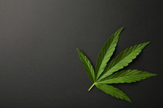 Cannabisblatt, marihuanablatt auf schwarz