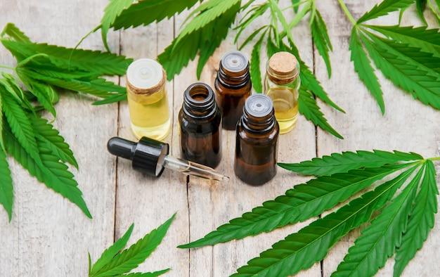 Cannabiskraut und blätter zur behandlung von brühe, tinktur, extrakt, öl. tiefenschärfe.