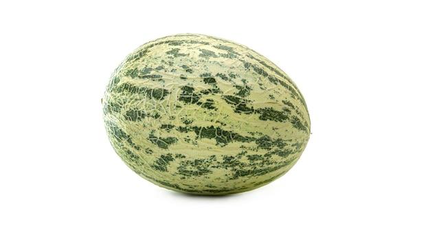 Cantaloupe-melone (cucumis melo) oder kekiri oder cavaillon-melone oder warzenmelone.