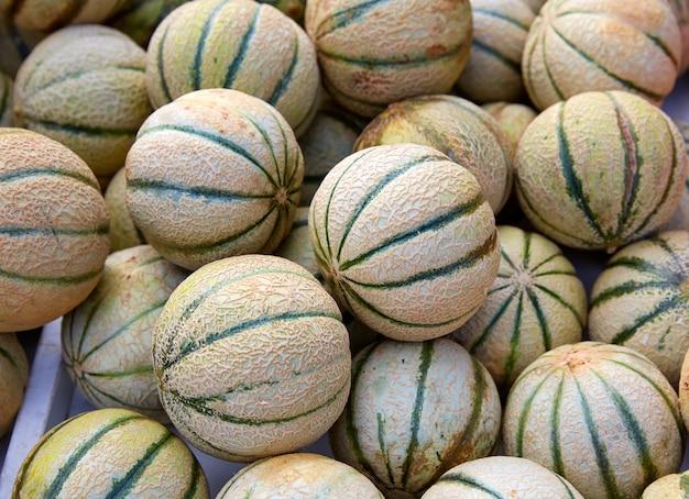 Cantaloupe-melonen auf dem marktplatz