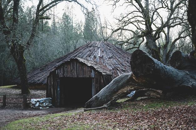 Ceremonial roundhouse der amerikanischen ureinwohner kaliforniens mit einem großen gefällten baum an der seite