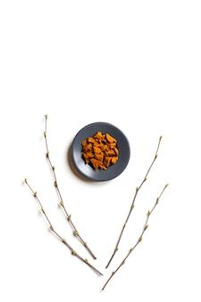 Chaga-pilz. zusammensetzung von kleinen trockenen stücken von birkenpilz chaga in einer runden platte und birkenzweigen isoliert auf einem weißen hintergrund.