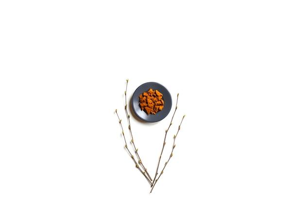 Chaga-pilz. zusammensetzung von kleinen trockenen stücken von birkenpilz chaga in einer runden platte und birkenzweigen isoliert auf einer weißen wand. konzept der alternativen naturmedizin