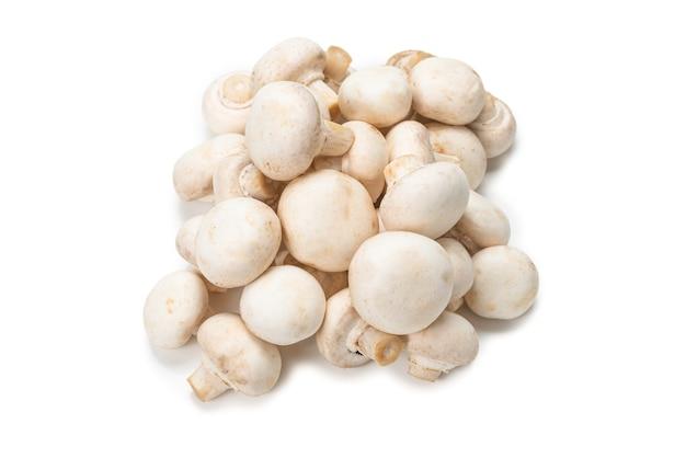 Champignon-pilz lokalisiert auf weiß