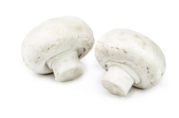 Champignon-pilz lokalisiert auf weißem ausschnitt