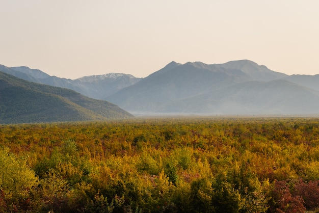 Charmante natur, majestätische berge und hügel, endlose grüne wiesen