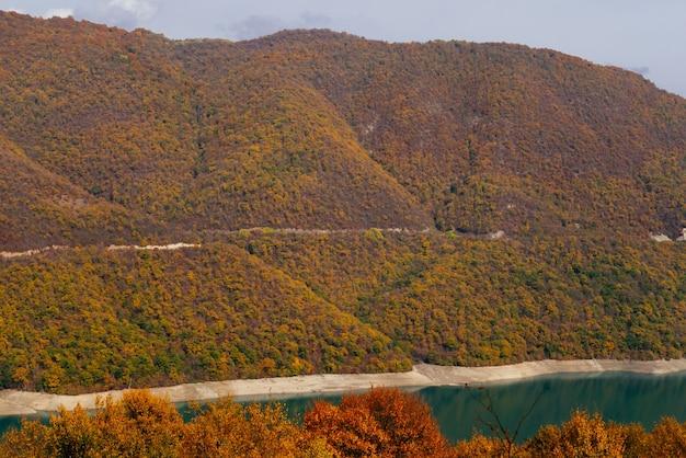 Charmante natur und landschaft, die berghänge sind mit grünen bäumen bedeckt, warmes sommerwetter