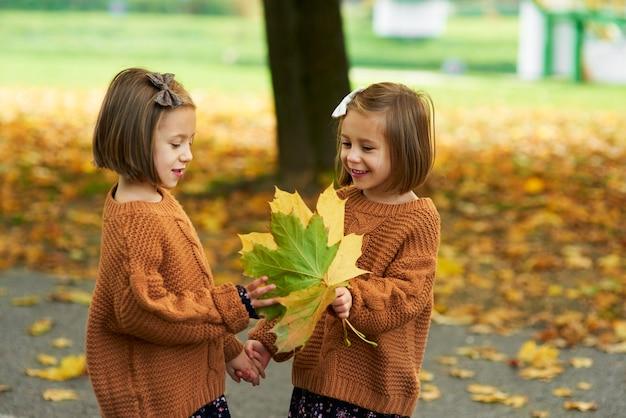Charmante zwillinge, die in der herbstsaison blätter pflücken