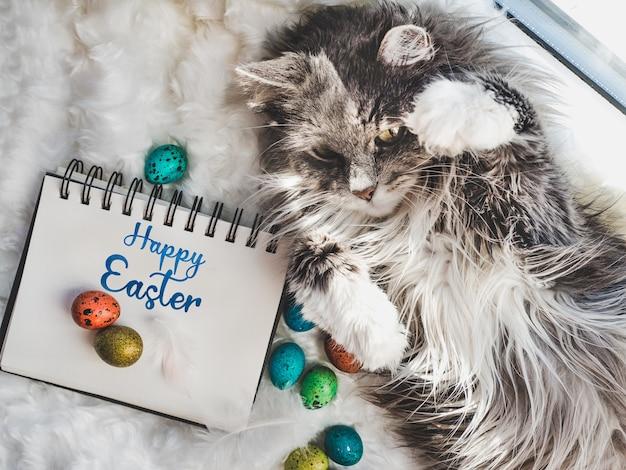 Charmantes kätzchen und ostereier gemalt in den hellen farben auf einem weißen hintergrund. draufsicht, nahaufnahme. frohe ostern. vorbereitung auf den urlaub
