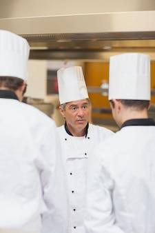 Chefkoch, der angestellte schilt