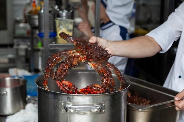 Chefkoch in uniform hält krabben in den händen und bereitet sich auf das kochen vor