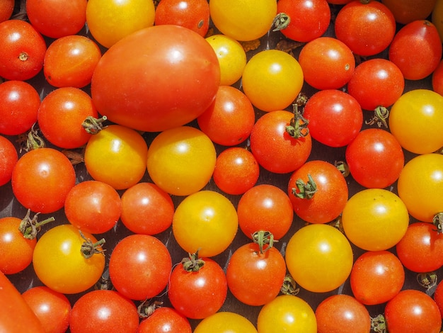 Cherry-tomaten-gemüse