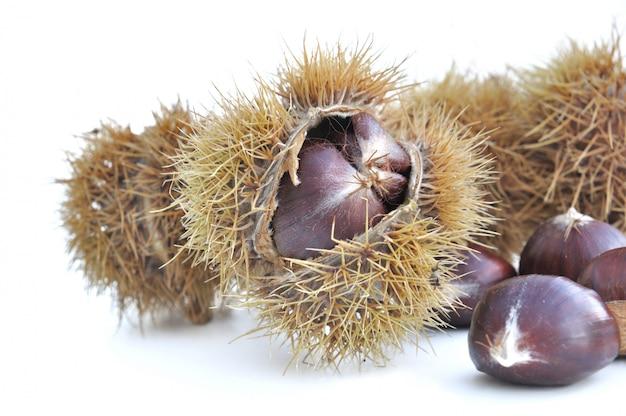 Chesnuts in schale