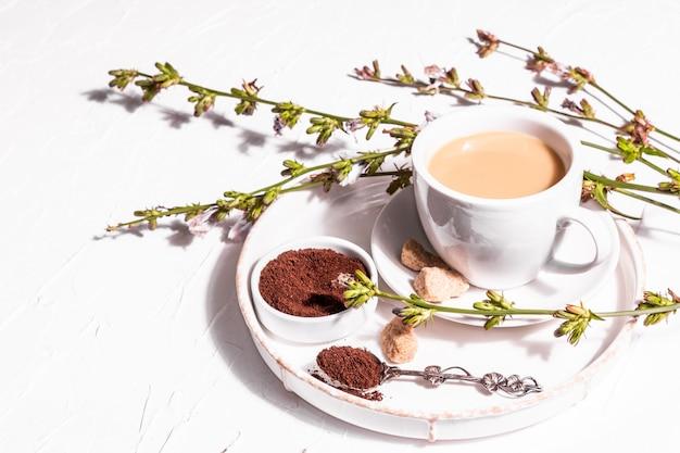 Chicorée-kaffee mit frischen blumen und pulver. natürliches koffeinfreies getränk in einer weißen tasse. alternativer ersatz für kaffee, koffein. weißer putzhintergrund, kopienraum