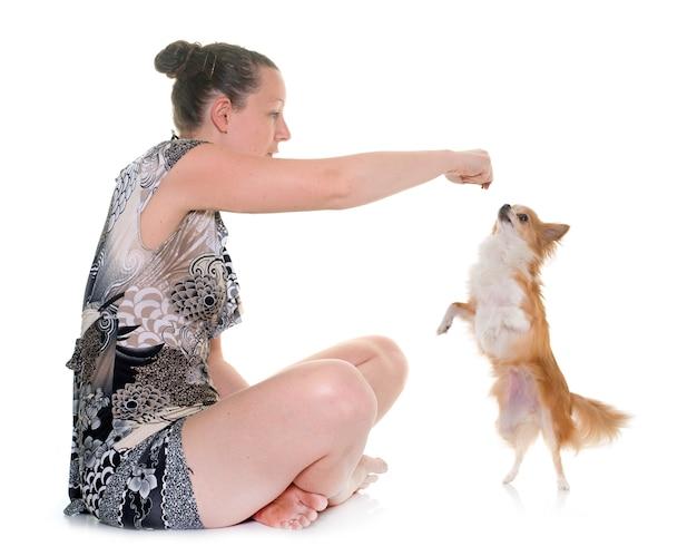 Chihuahua und frau
