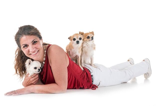 Chihuahuas, besitzer und gehorsam