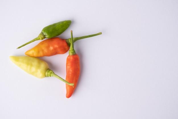 Chili auf weißem hintergrund mit kopienraum.