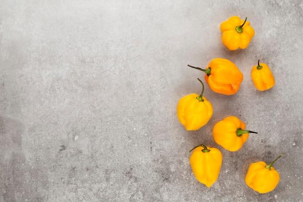 Chili-muster mit pastellfarbenem hintergrund, musterhintergrunddesign.