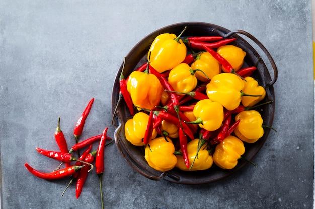 Chili-muster mit pastellfarbenem hintergrund, musterhintergrunddesign. Premium Fotos