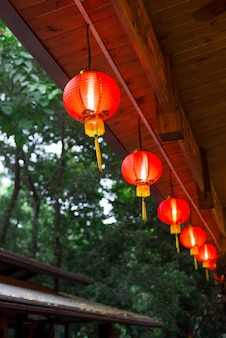 Chinesische dekoration des neuen jahres