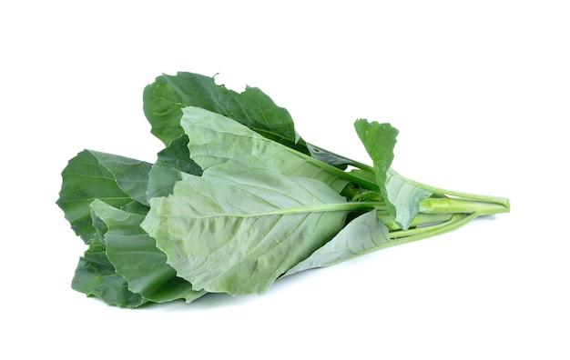 Chinesischer brokkoli auf weiß