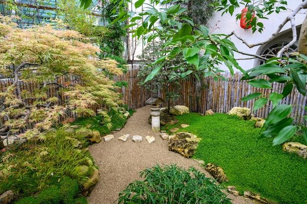 Chinesischer garten. wunderbare pflanzenwelt. botanischer garten. zen.
