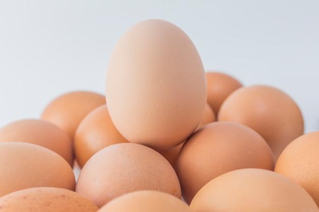 Cholesterin eigelb licht einzigen natur tier