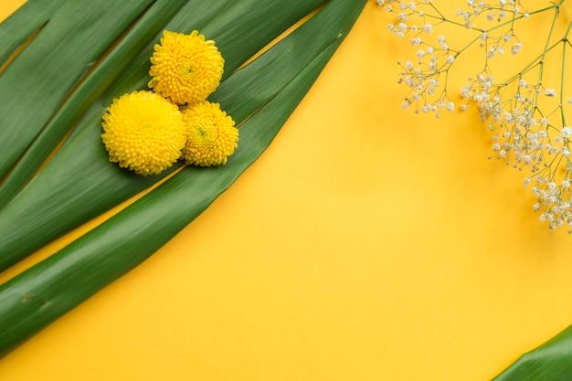 Chrysantheme und gemeine baby's-atemblumen auf grünen blättern gegen gelben hintergrund