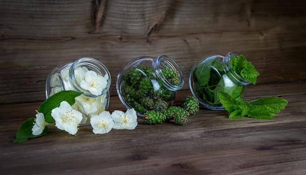 Chubushnik blüht grüne tannenzapfen und zitronenminzblätter im glas glass
