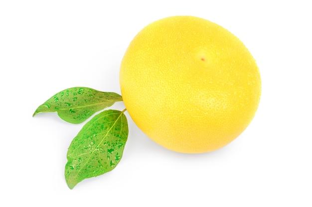 Citrus switty mit grünen blättern lokalisiert auf weißem ausschnitt