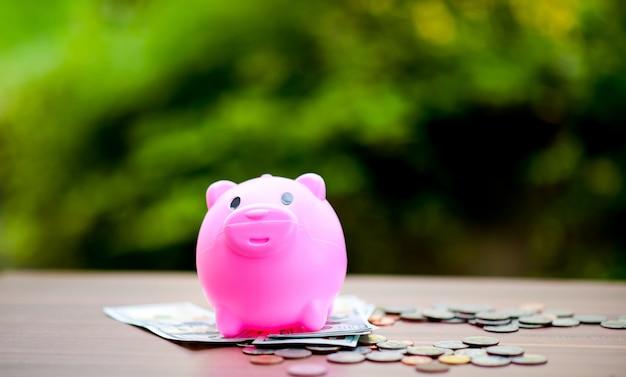 Close-up bilder von geld und schweinen, geld sparen geld sparen das konzept der geld sparen