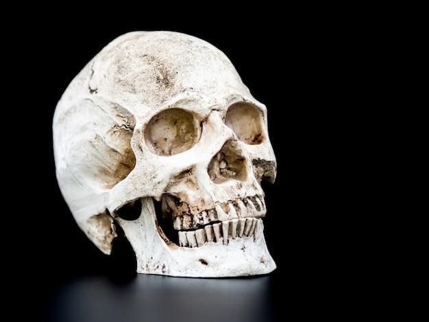 Close up menschlicher schädel auf dem schwarzen hintergrund