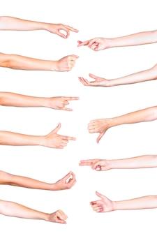 Collage von den menschlichen händen, die auf weißen hintergrund gestikulieren